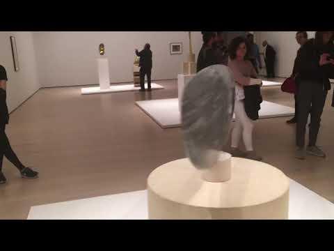 Constantin Brancusi - Fish #7 MoMA