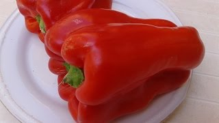 Перец Сладкий Очень Вкусный Гарнир для Мяса