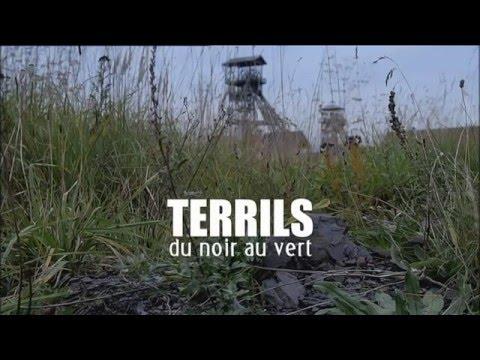 Terrils, du noir au vert