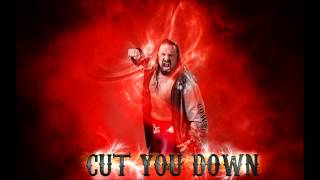 "James Storm 2014 Theme Song ""Cut You Down""(Arena Effects) by Dale Oliver +DL"