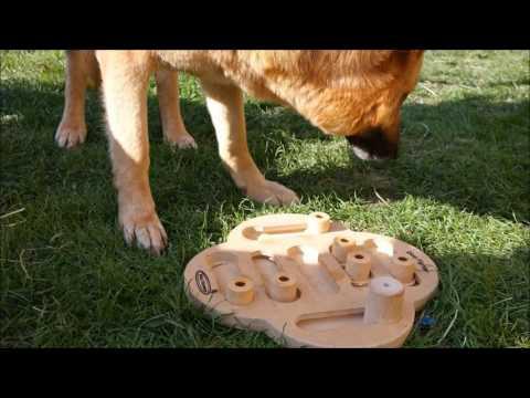 Testbericht: Dog Fighter von Nina Ottosson