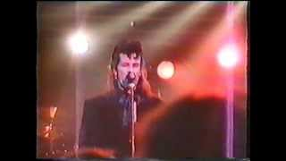 Mink DeVille - 03. This Must Be The Night