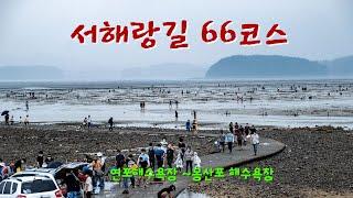 서해랑길 66코스  연포해수욕장에서 몽산포 해수욕장 까…