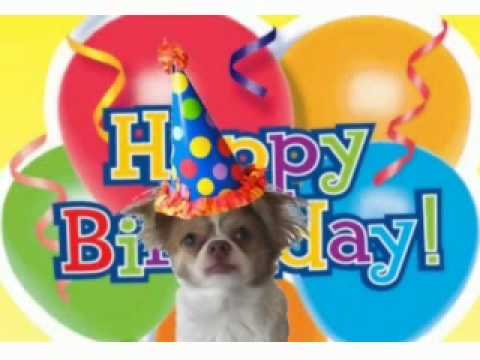 Frazi Dog Sings Happy Birthday