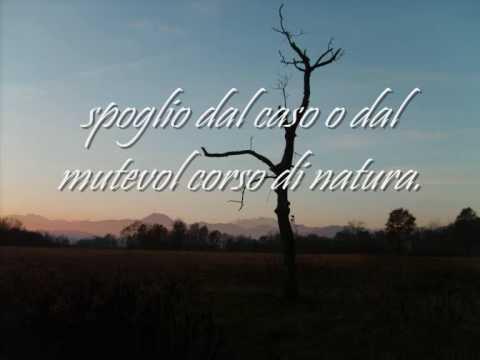 """William Shakespeare  """"Sonetto 18"""""""