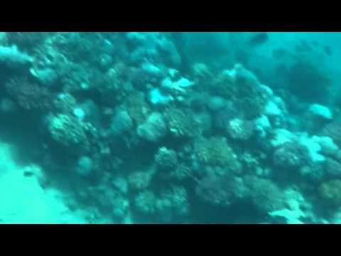 10 самых чистых морей в мире - Фото Мир Фактов