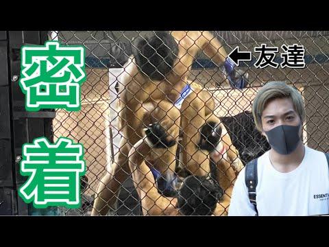 太田忍Ota ShinobuYouTube投稿サムネイル画像