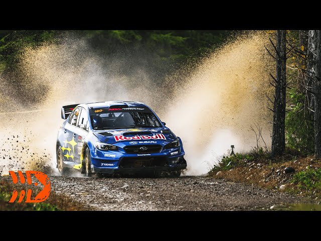 Best of Olympus Rally 2020 - Action, Flat Out, Pure Sound