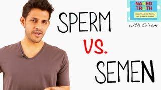 The Difference Between Sperm & Semen - Episode 20