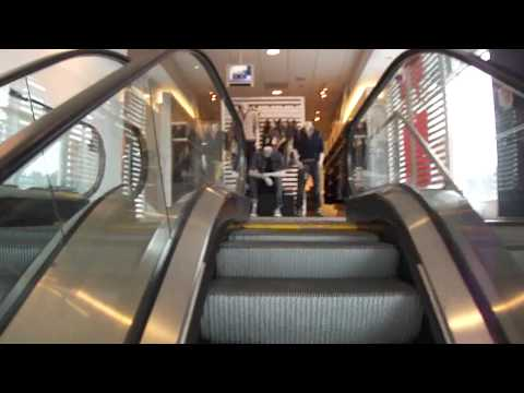 VERY LONG Schindler Escalators @ The GAP, U. Village, Seattle,WA.MP4
