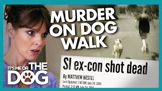 Son Left Traumatised After Gruesome Dog Walk Discovery | It's Me or the Dog