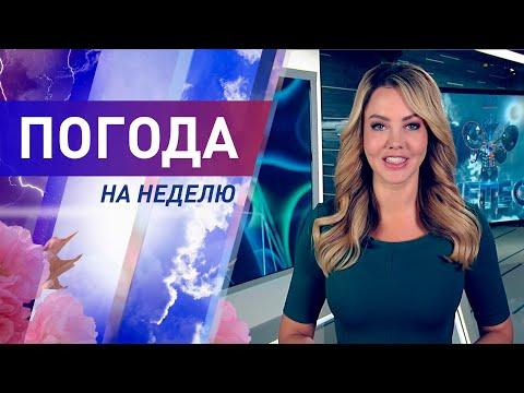 Погода на неделю с 13 по 19 июля 2020. Прогноз погоды. Беларусь | Метеогид