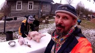 Хороший денек - овцы и индюки\\ В деревню!