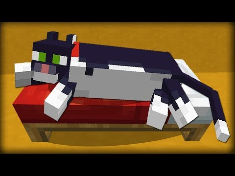 Minecraft: 25 Things You Didn't Know About Cats