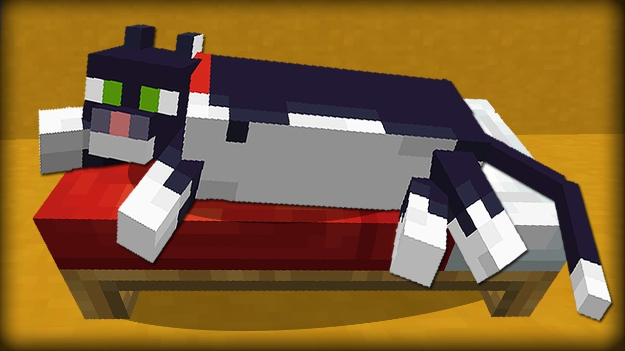 why do cats in minecraft sit on chests