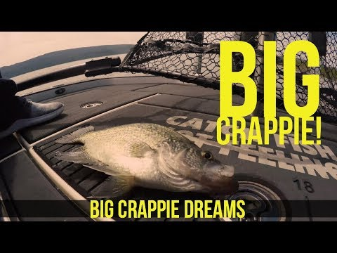 Sight Fishing for Black Crappie w Rick Hattaway Northern California Part 2