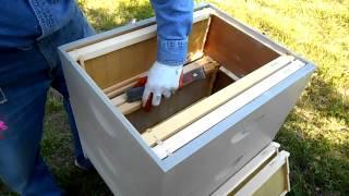 Installing Deep Nuc Into 2 Medium Hive Bodies - Part 1