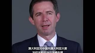 中国对澳大利亚大麦征高关税,澳称不与中国打贸易战