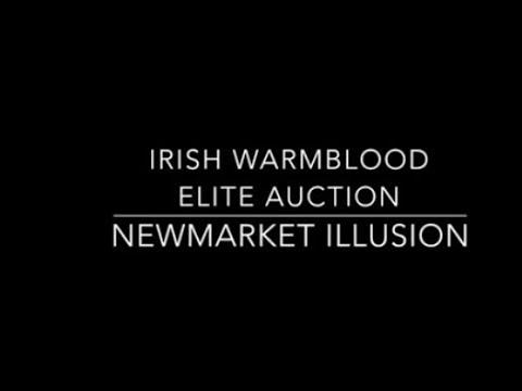 Newmarket Illusion