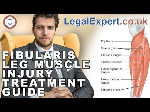 Fibularis Leg Muscle Injury Treatment Guide ( 2019 ) UK