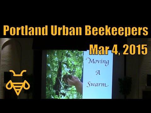 Swarms - Mar 4, 2015