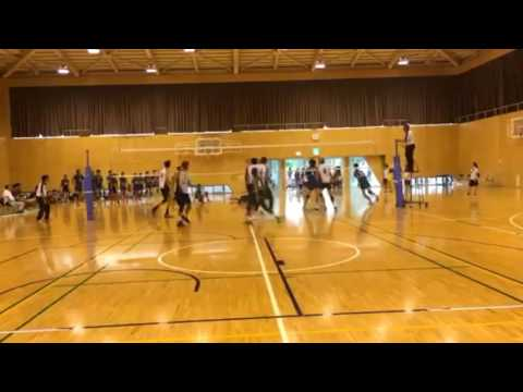 Greg Faulkner Blizzard Volleyball Japan Highlights 2016