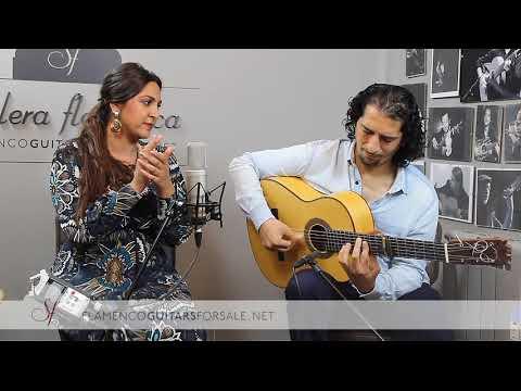 Lela Soto, José Andrés Cortés y Dani Bonilla: Flamenco Puro en Solera Flamenca