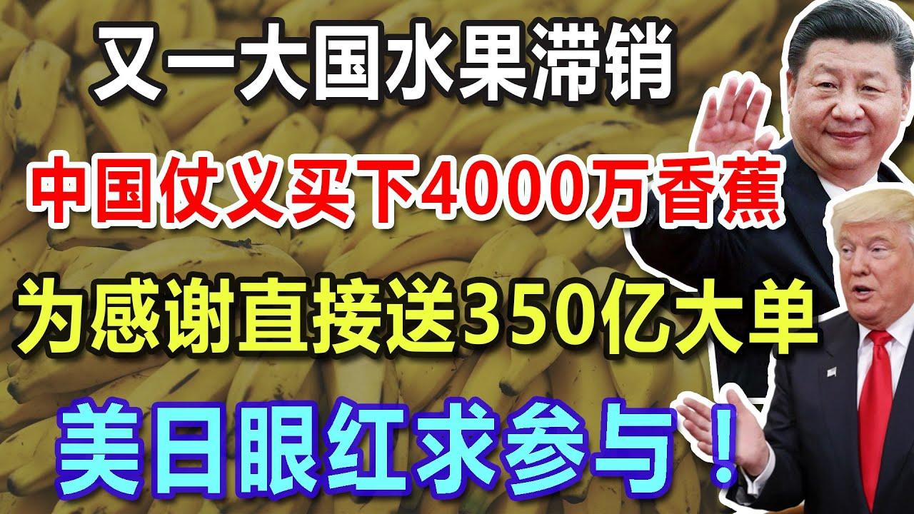 又一大国水果滞销,中国仗义买下4000万香蕉,为感谢直接送350亿大单,美日眼红求参与!