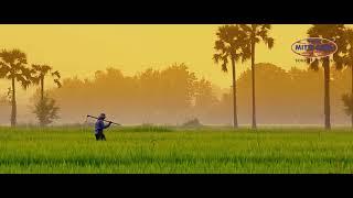 भारत को आत्मनिर्भर बनाए - भारत में बनी स्वदेशी स्वदेशी प्रोडक्ट्स अपनाये | zappl