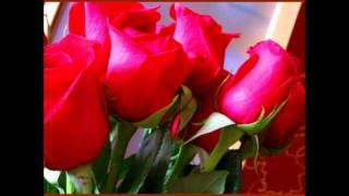 Rose rosse per una signora triste