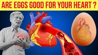 Are Eggs Good For Your Heart? What Happens to your Heart If You Take an Egg Daily