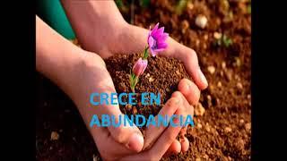 Crece en Abundancia y en Espiritu
