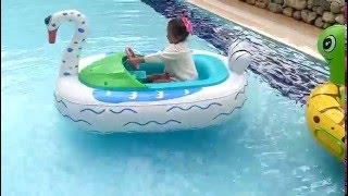 Havuzda Kuğuya Bindik Zıplama Zıpladık Zıpladık Eğlenceli çocuk Videosu