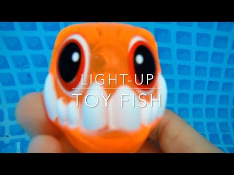 Light Up Toy Fish