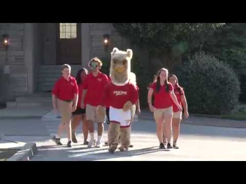 Chestnut Hill College Orientation Video 2017