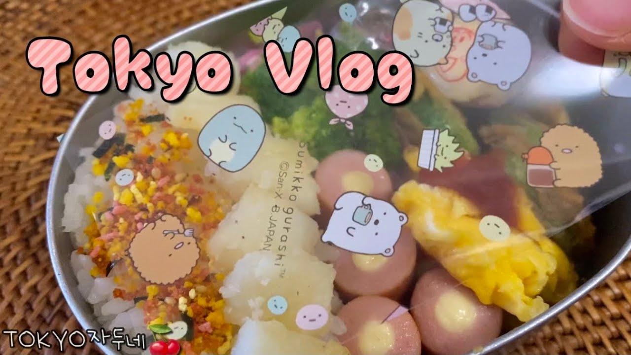 🍒 도쿄 브이로그 • 도시락싸고 장보기🛒 긴자 장난감 백화점🧸 집밥해먹고 피자도 시켜먹은 평범한 일상🍕