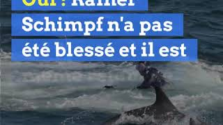 Ce plongeur a été avalé par une baleine... avant d'être recraché vivant !