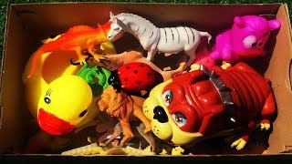 Box of Full Sea Wild Zoo Animals Farm animals Learn Animal Names Lots of Animals Toys For Kids