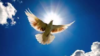 Dirty Vegas - Little White Doves (Zyblot Remix) [FREE]