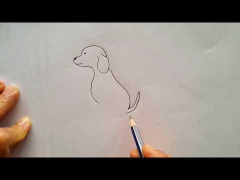 vẽ tranh con chó tại kienthuccuatoi.com