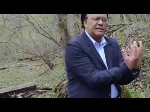 JMC Natural Medicine - Glade Creek, West Virginia Natural Walk 1