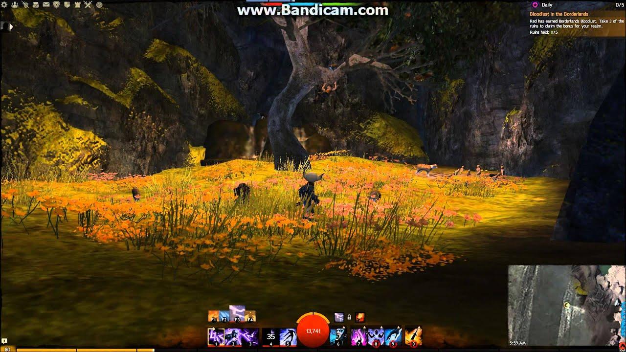 Guild Wars 2 Borderlands Sanctum Jumping Puzzle Hidden Area Cats ...