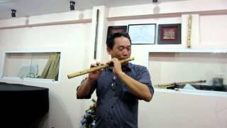 Nghệ Sĩ Sáo Trúc - Đinh Linh