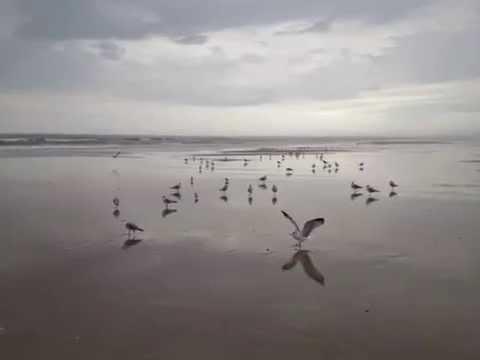 Atlantic Beach, FL
