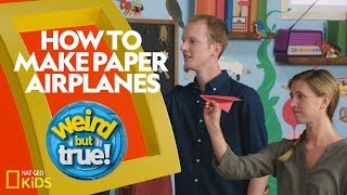 How to Make Paper Airplanes | Weirdest Bestest Truest