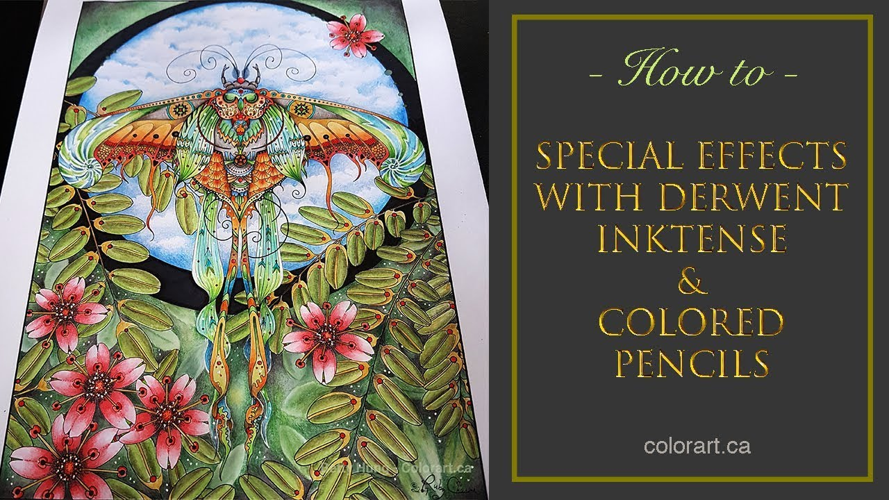 Creating Special Coloring Effects With Derwent Inktense