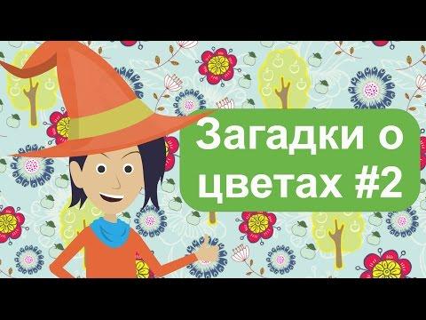 ЗАГАДКИ для детей, о цветах 2ч