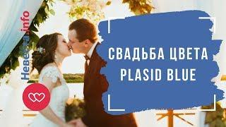 Свадьба цвета plasid blue