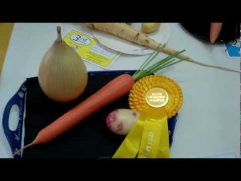 allotment-diary-sep-2-a-quick-look-around-ingleton-horticultural-show-veg-classes