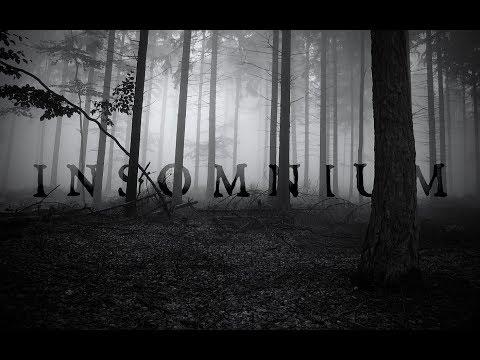 Insomnium (Salt Lake City, USA 2017)